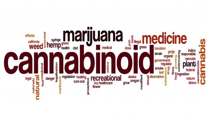 Каннабиноиды