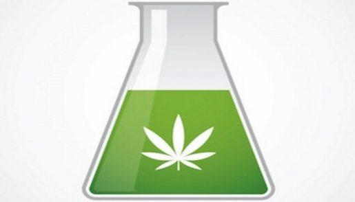 marijuana_science