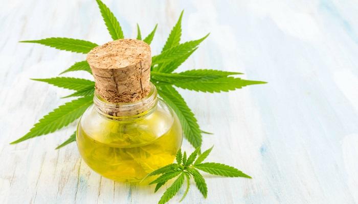 Конопляное масло — использование в дерматологии