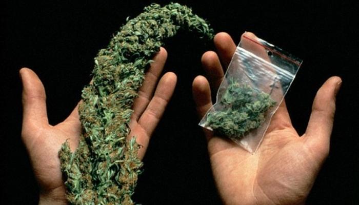 Психические расстройства при злоупотреблении марихуаны