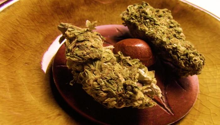 Фитотерапия марихуаной. Рецепт