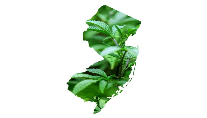 9 августа 2012 — начало регистрации медицинской марихуаны в Нью-Джерси