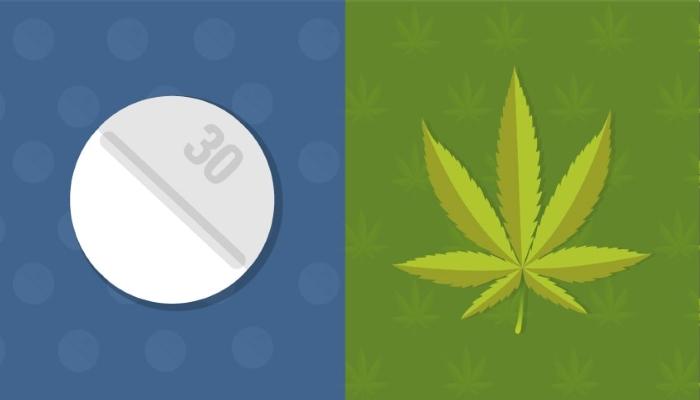 Является ли марихуана альтернативой анальгетикам?