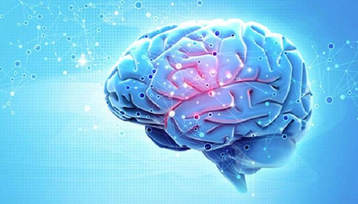 Каннабис и активная функция мозга