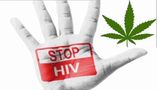 hivcannabis
