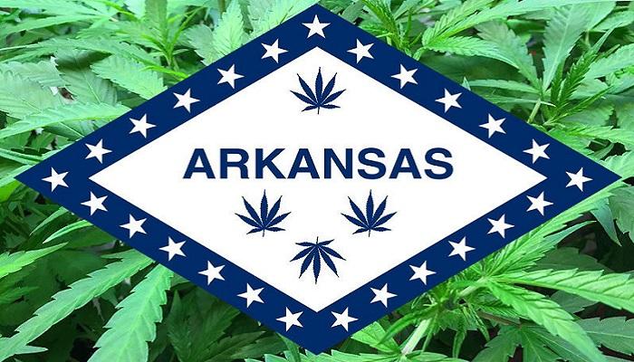 Группа сторонников медицинского каннабиса Арканзаса представляет подписи