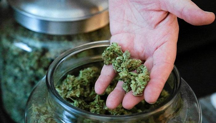 Медицинские диспансеры марихуаны не привлекают преступность