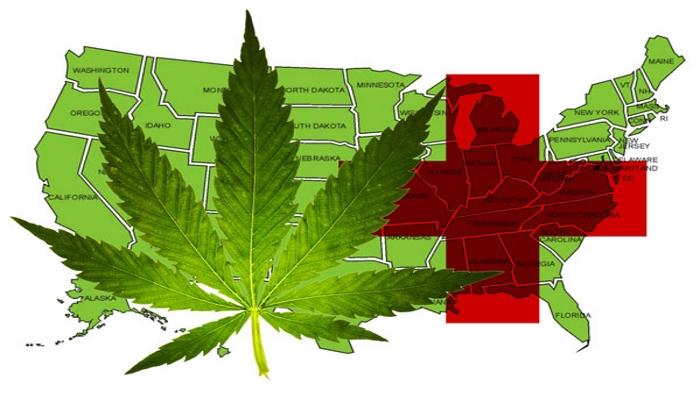 Медицинская марихуана: обновления