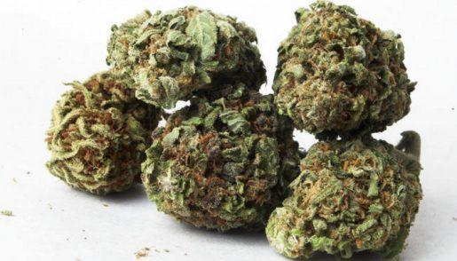 marihuana-paquete