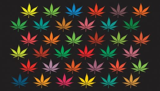 marijuana-background-graphics