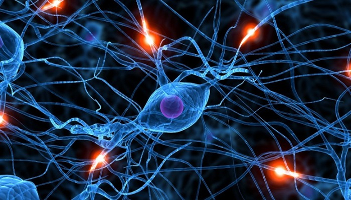 Конопля и нейропротекция