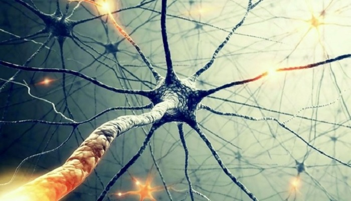 Медицинская марихуана и повреждение нерва
