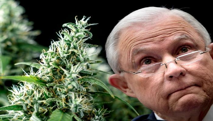 Федеральный судья: «Криминализация марихуаны является» абсурдной»