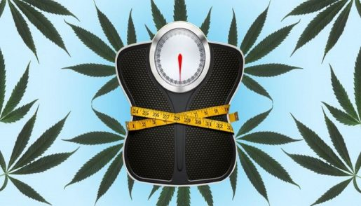 weed-anorexia