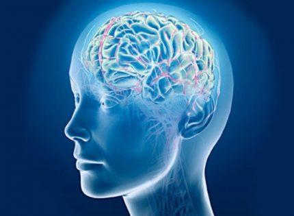 Клетки мозга размножаются под воздействием марихуаны.