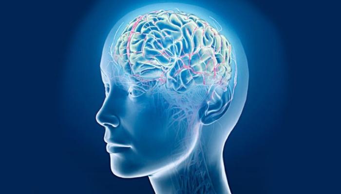 Клетки мозга размножаются под воздействием марихуаны