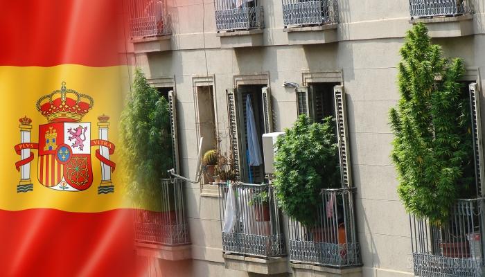 Испания борется с кризисом, выращивая марихуану