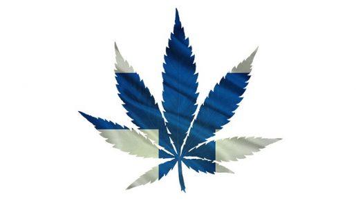легализация каннабиса
