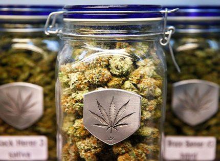 Медицинская марихуана снижает ригидность мышц.