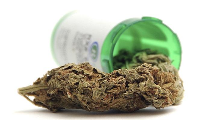Марихуана нуждается в тестировании, чтобы быть законным лекарством