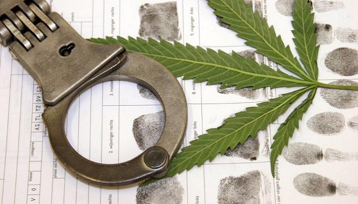 Колорадо. Возрастают аресты за хранение марихуаны, несмотря на медицинские карты