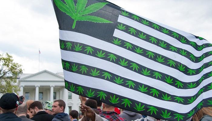 Женщины США нуждаются в легализации медицинской марихуаны