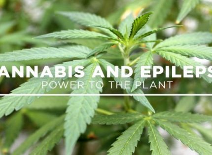 Эпилепсия и каннабидиол