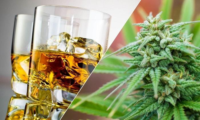 Лечение алкоголизма коноплей