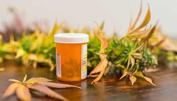 Каннабис в сравнении с лекарствами при заболеваниях пищеварительной системы