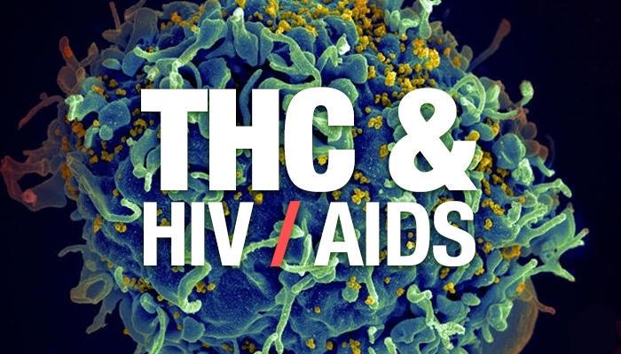 Синтетический ТГК смягчает ВИЧ-инфекцию