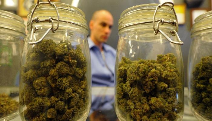 Медицинская марихуана — «Великая мистификация всех времен»