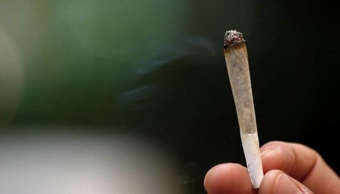 Повседневное курение марихуаны не опасно для легких