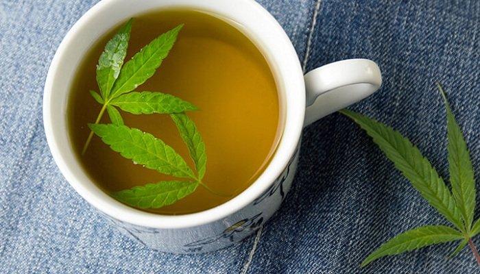 Чай с марихуаной — альтернатива курению