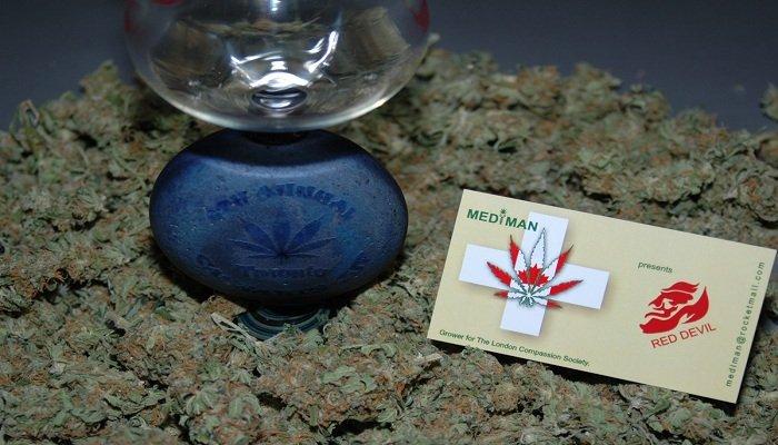 Red Devil: победитель  2009 Toronto Cannabis Cup