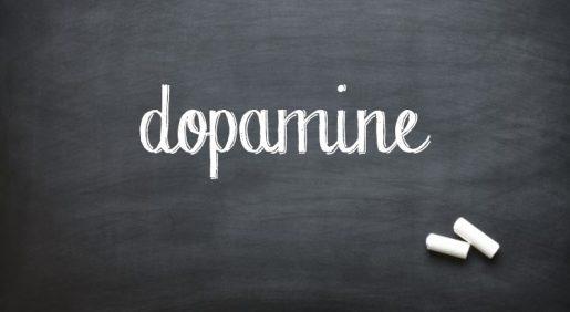 Индуцированное высвобождение допамина