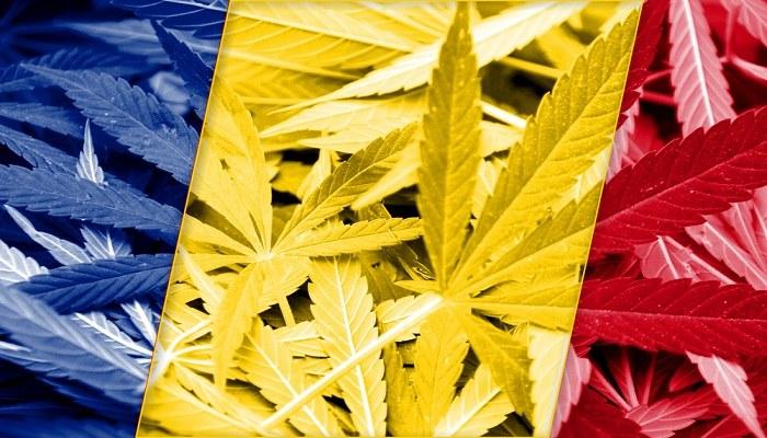 Румыния легализует медицинскую марихуану