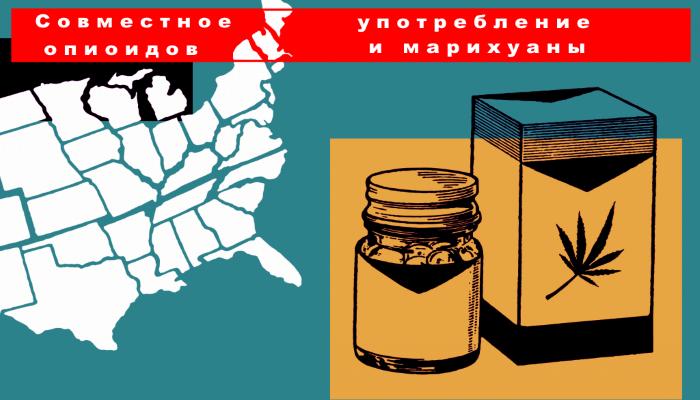 Совместное употребление каннабиноидов и опиоидов