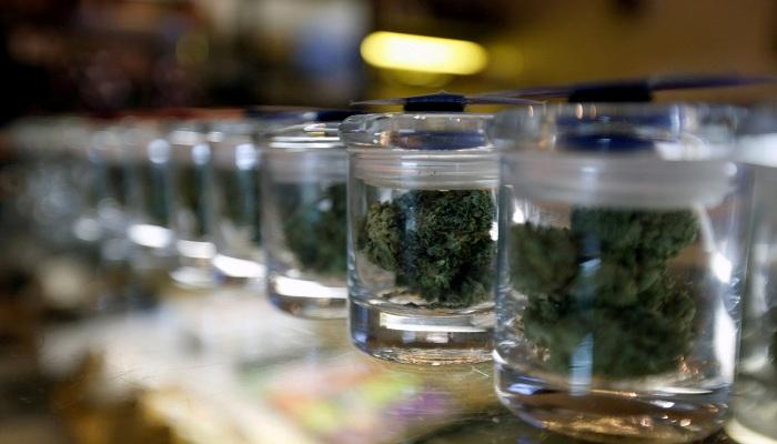 Еще раз о медицинской марихуане в общем