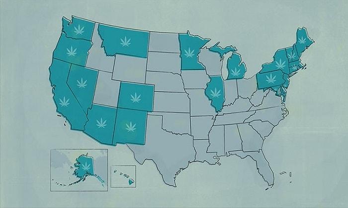 Медицинская марихуана в Северной Америке