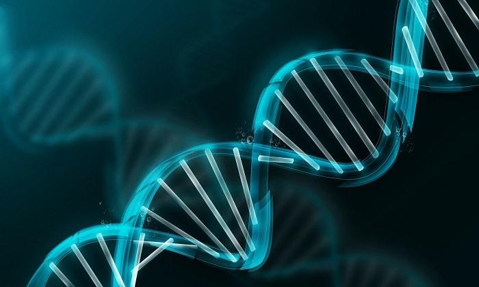 Марихуана может лечить, воздействуя на ДНК