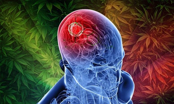Возможна ли передозировка марихуаной?
