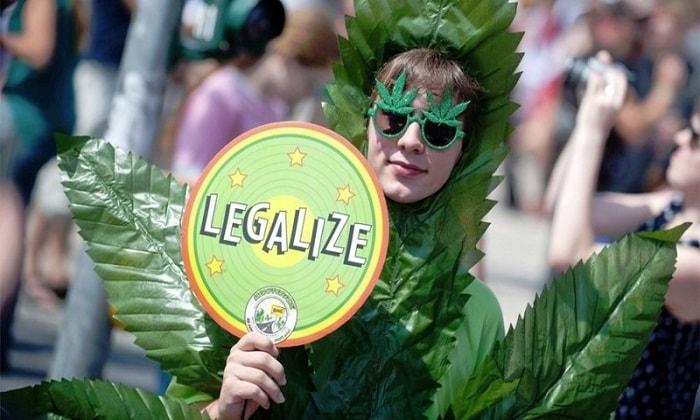 Австралия легализует выращивание медицинской марихуаны