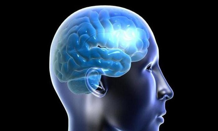влияние конопли на мозг