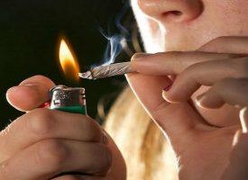 влияние конопли при ее курении
