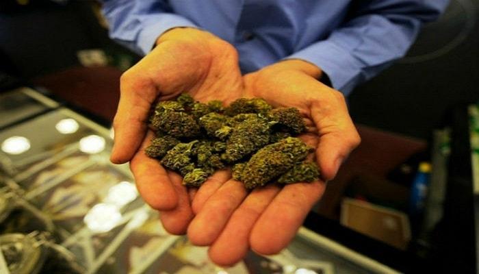 в Европе легализуют марихуанну