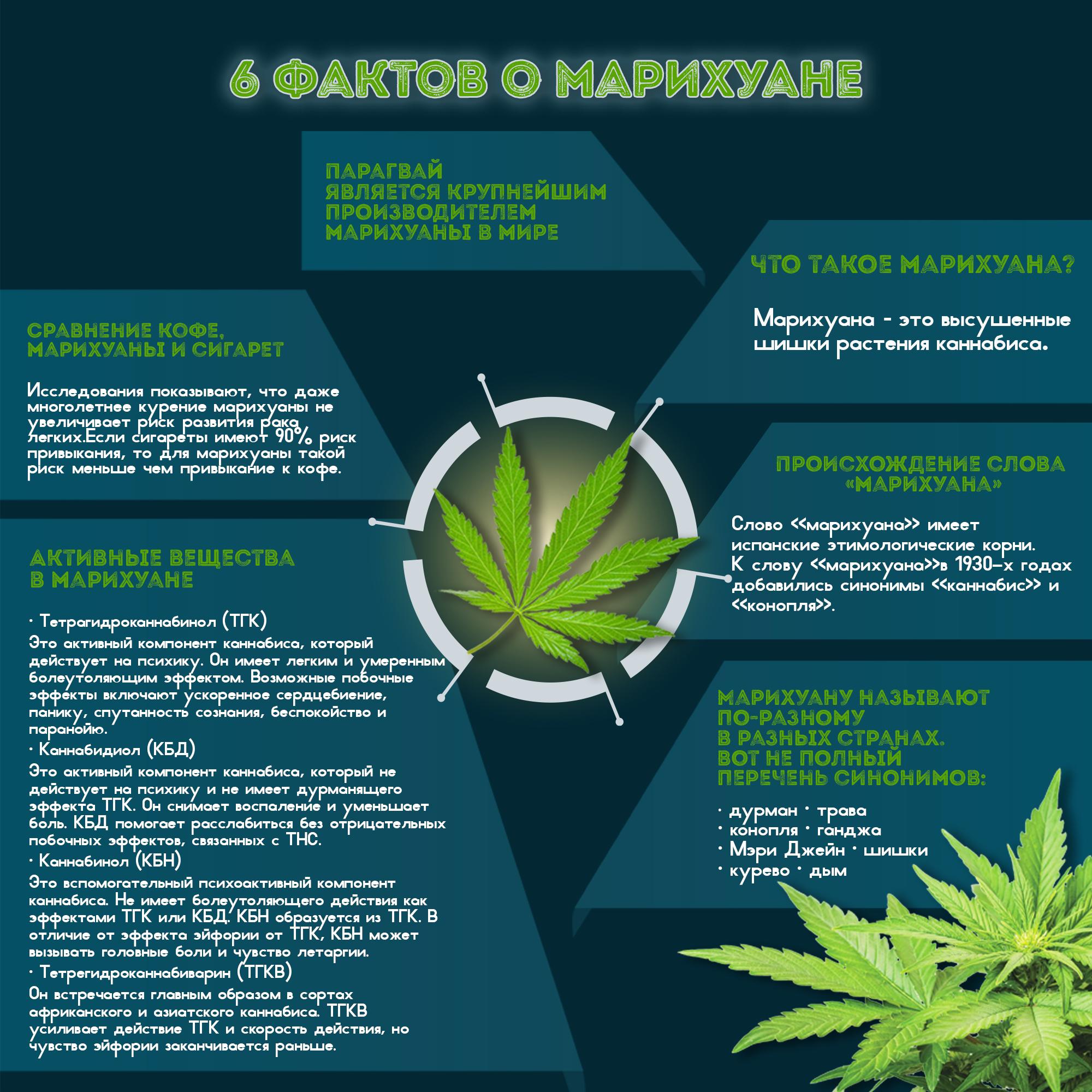 Конопля ее побочные действия сильный кашель марихуана