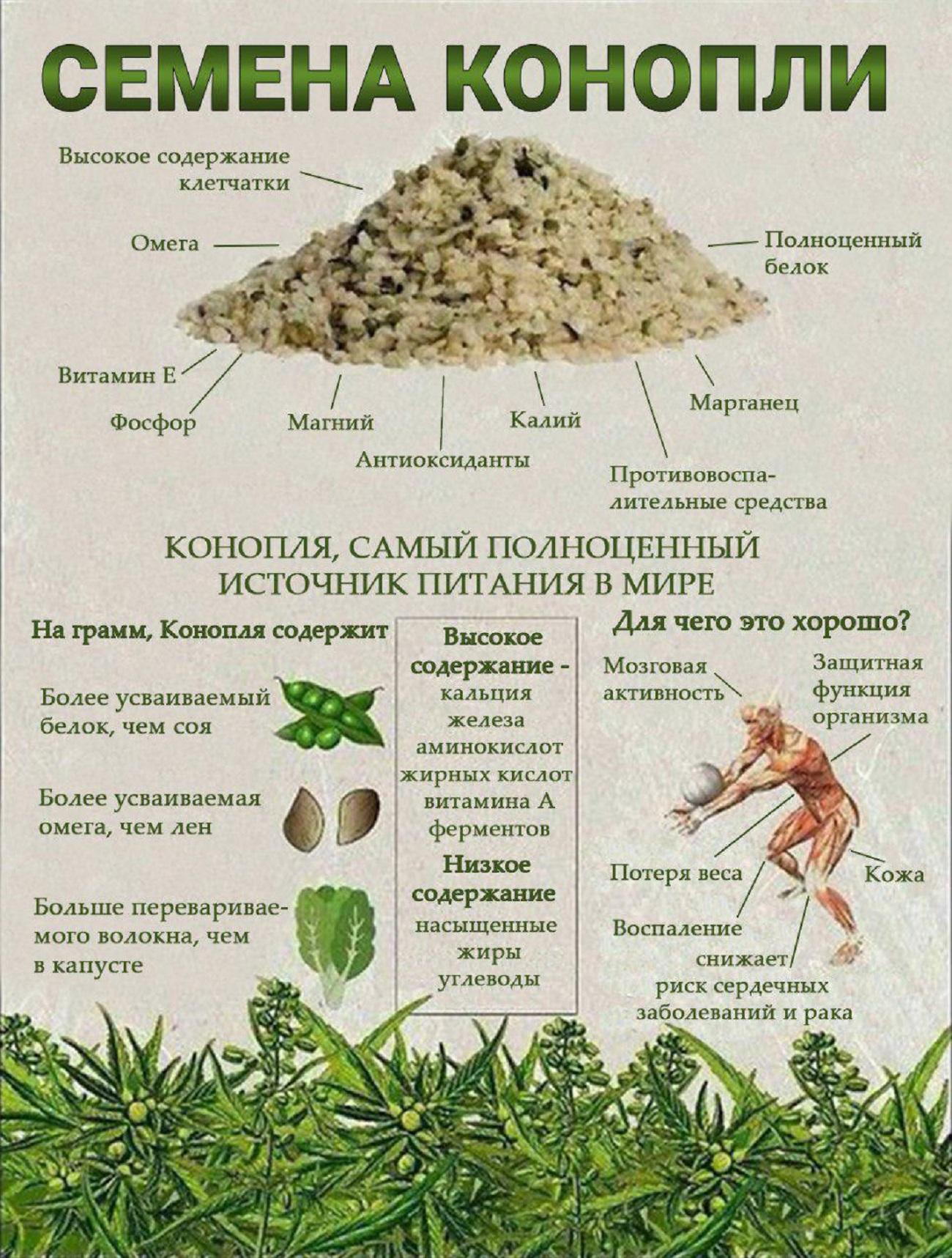 Конопля семена полезность семена гидропоники купить украина