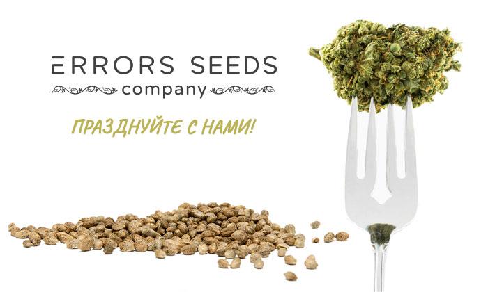 Компания Error-seeds празднует день рождение!