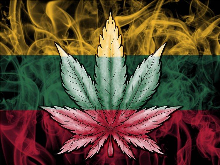 Сейм Литвы узаконил медикаменты с коноплей