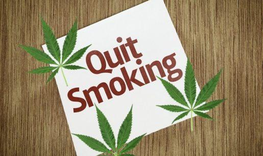 курение марихуаны, конопля, марихуана, ганжа,